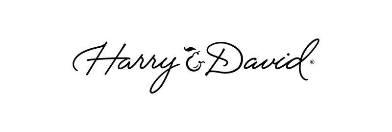 HD pear persand logo
